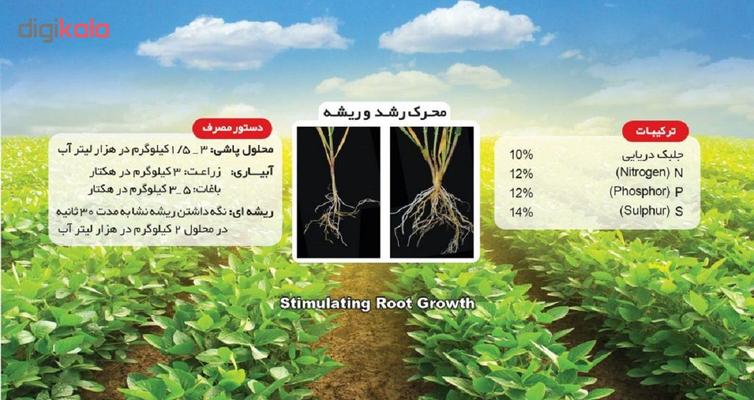 کود محرک رشد ریشه تتاکو مدل AYSA-NEW وزن 1 کیلوگرم