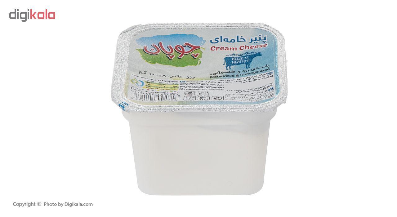 پنیر خامه ای چوپان وزن 100 گرم main 1 3