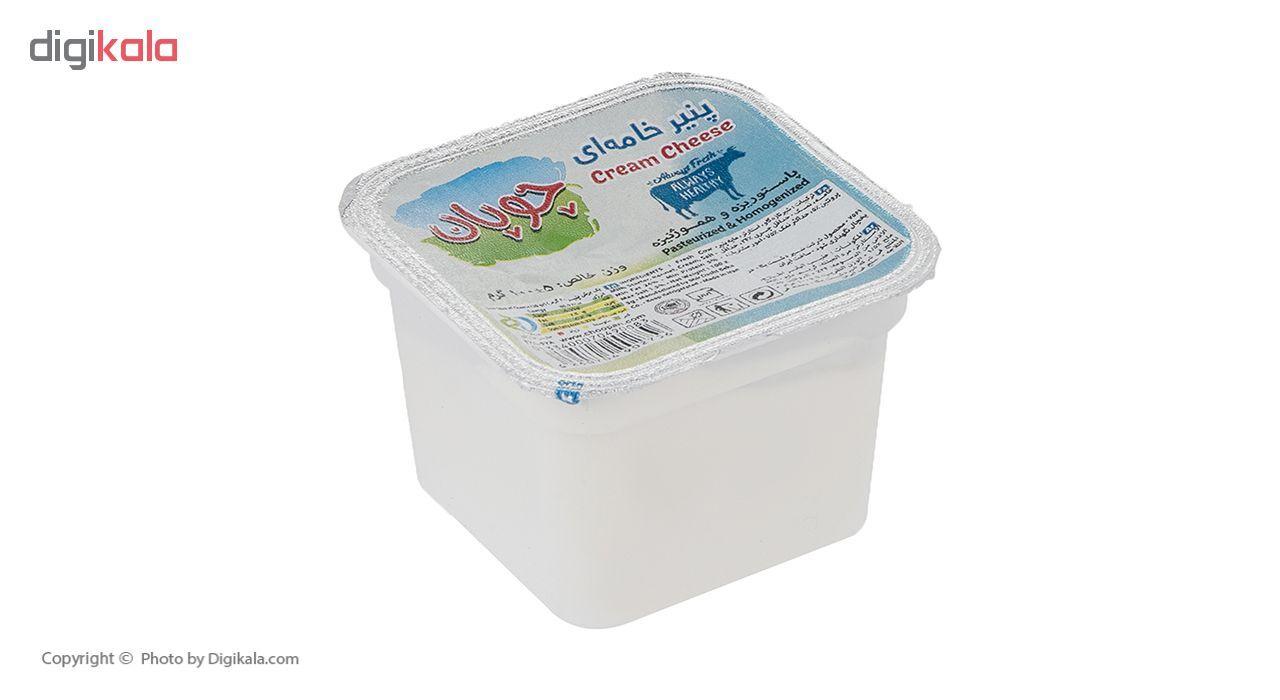 پنیر خامه ای چوپان وزن 100 گرم main 1 4