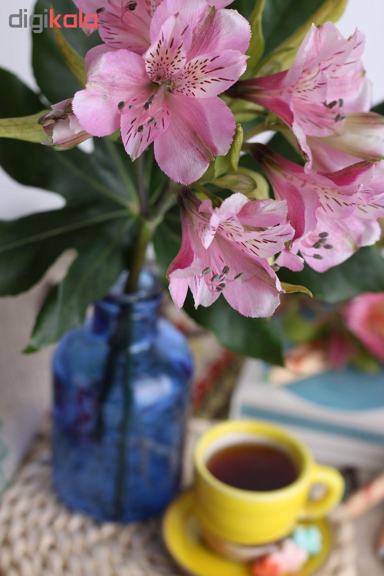 گلدان کد SD14 main 1 19