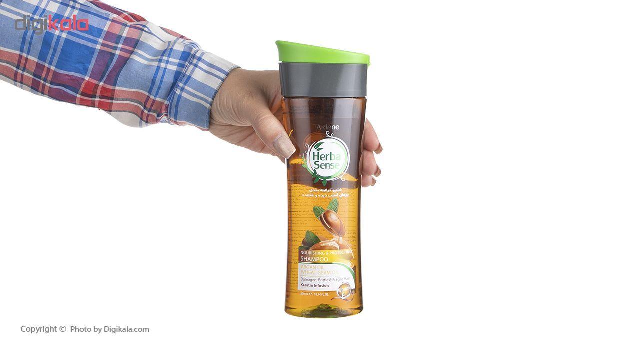 شامپو کراتینه مغذی آردن سری هرباسنس حجم 300 میلی لیتر main 1 4