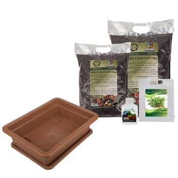 مجموعه کاشت سبزی خرفه گلباران سبز
