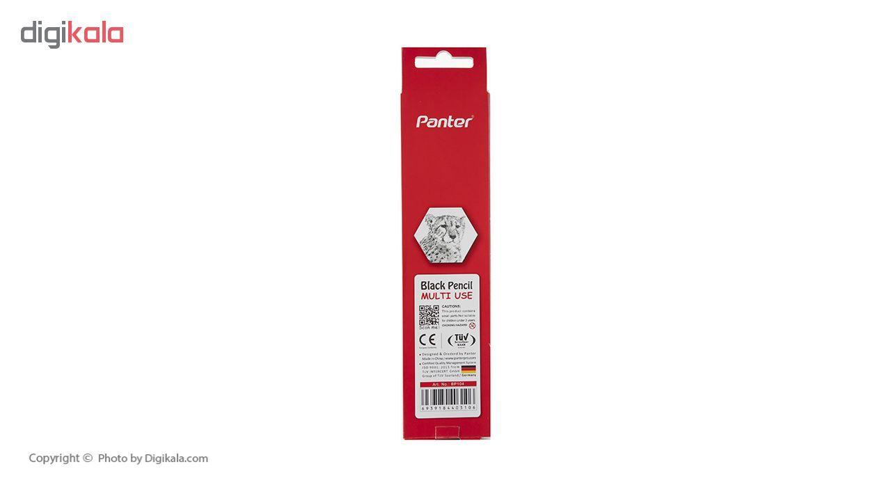 مداد مشکی پنتر مدل Multi Use بسته 12 عددی main 1 3