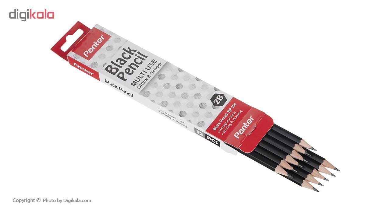 مداد مشکی پنتر مدل Multi Use بسته 12 عددی main 1 4