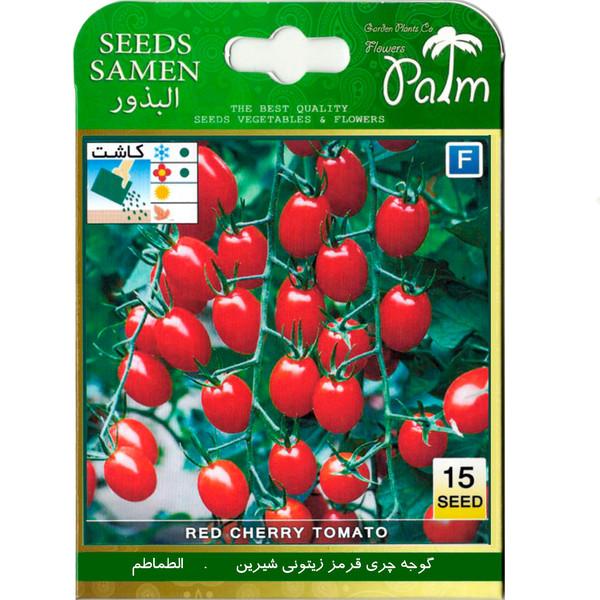 بذر گوجه چری قرمز زیتونی شیرین پالم کد 62 بسته 15 عددی