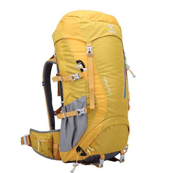 کوله پشتی کوهنوردی 45 لیتری پکینیو مدل aries
