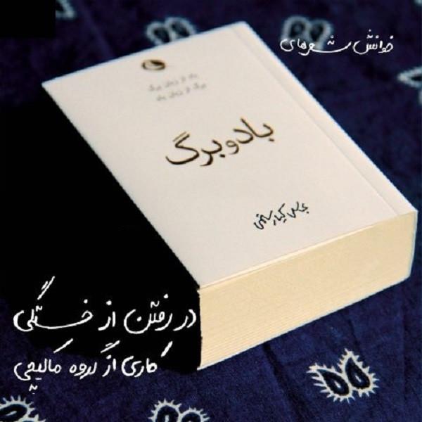 آلبوم موسیقی بادوبرگ اثر عباس کیا رستمی
