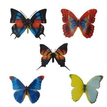 مگنت طرح پروانه مجموعه 5 عددی
