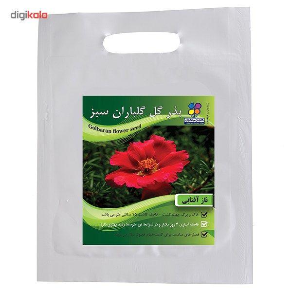 بذر گل ناز آفتابی گلباران سبز main 1 1