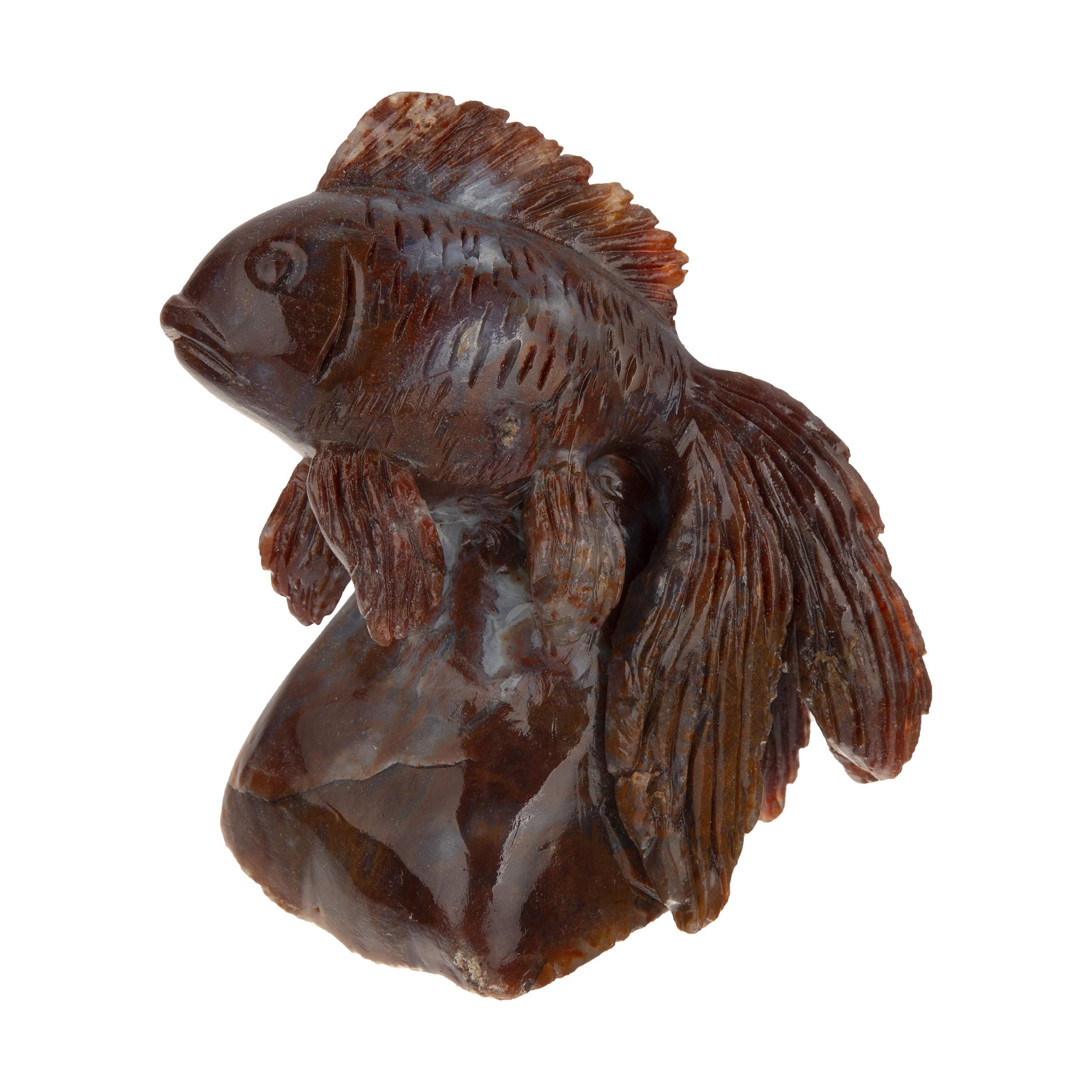 خرید                      مجسمه طرح ماهی قرمز
