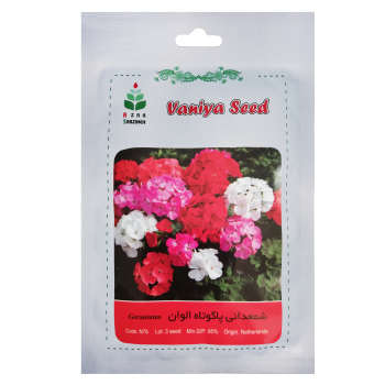 بذر گل شمعدانی پاکوتاه الوان آذر سبزینه مدل N76