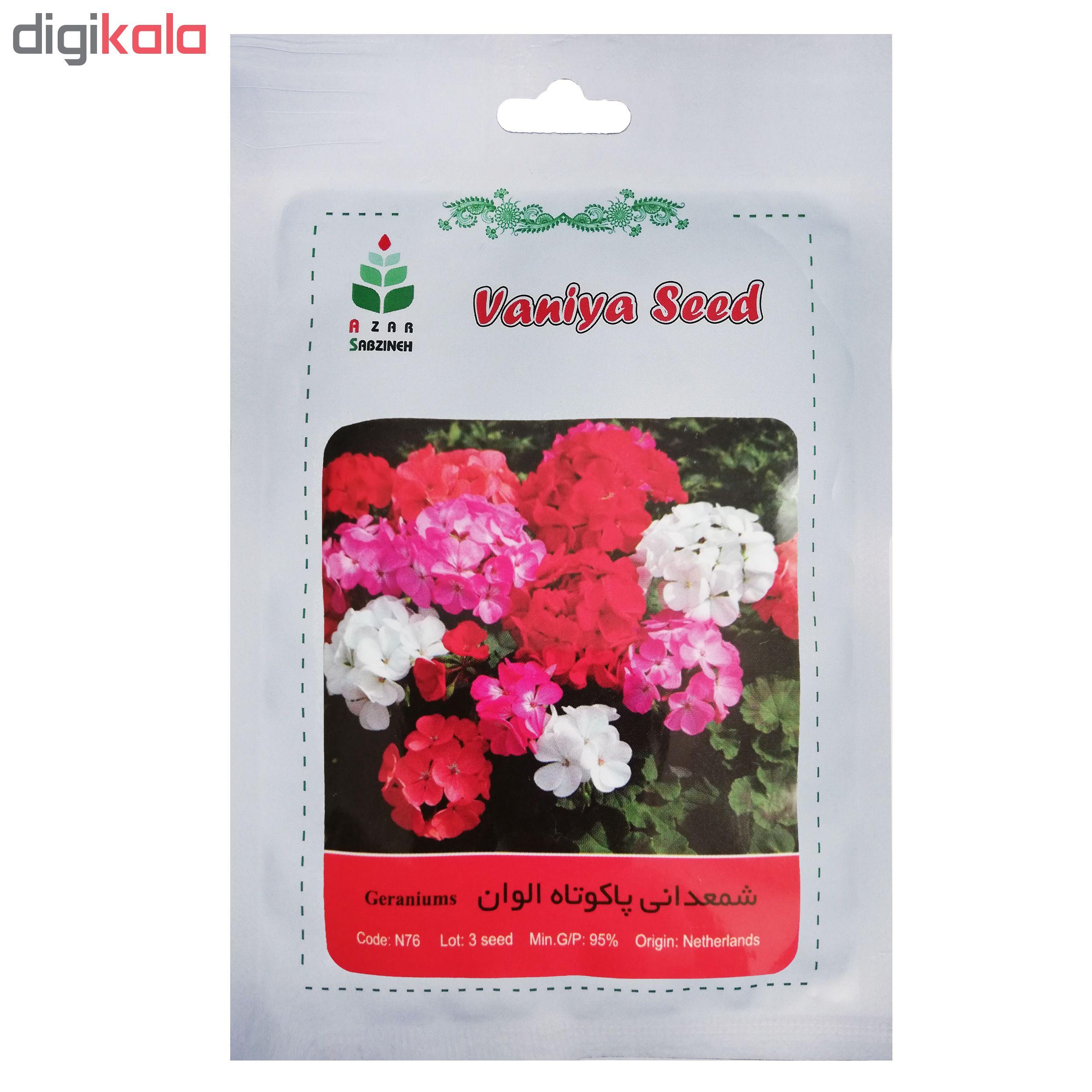 بذر گل شمعدانی پاکوتاه الوان آذر سبزینه مدل N76 main 1 1