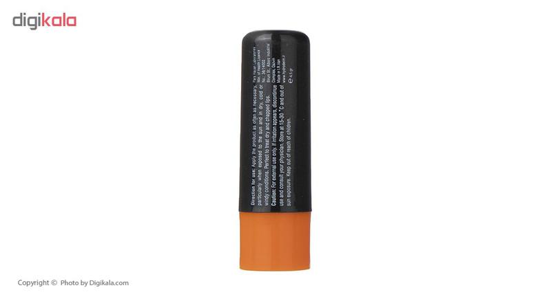 بالم لب مردانه هیدرودرم مدل Protects مقدار 4.5 گرم
