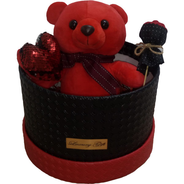 ست هدیه عروسک طرح خرس قرمز کد ATV008