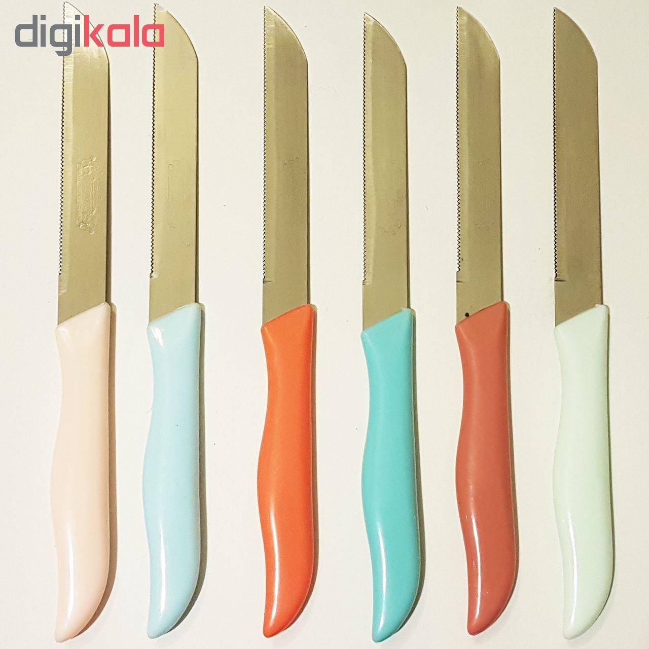 چاقو آشپزخانه سولیمون مدل FARDINOX 01 main 1 4