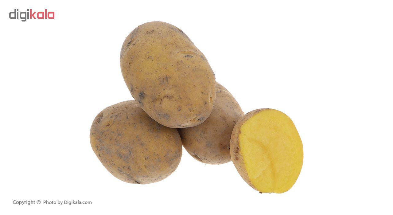 سیب زمینی بلوط - 2 کیلوگرم main 1 2