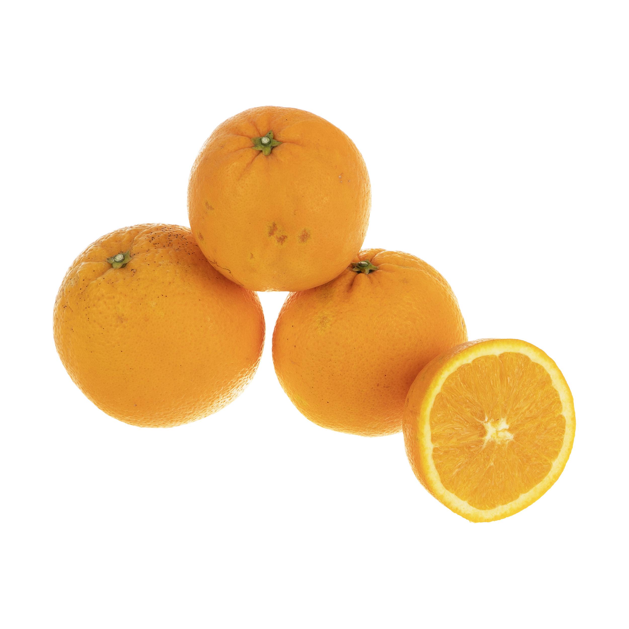پرتقال تامسون شمال درجه یک بلوط - 1 کیلوگرم