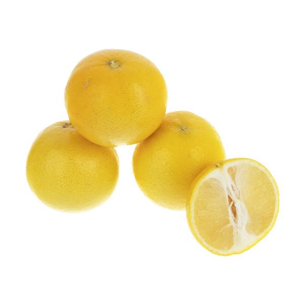 لیمو شیرین بلوط - 1 کیلوگرم