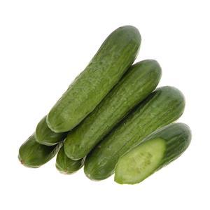 خیار گلخانه ای بلوط - 1 کیلوگرم