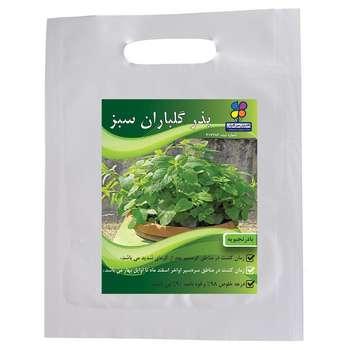بذر بادرنجبویه گلباران سبز