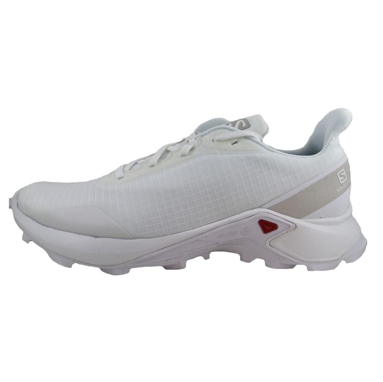 کفش مخصوص پیاده روی مردانه سالومون مدل 407983 MIR