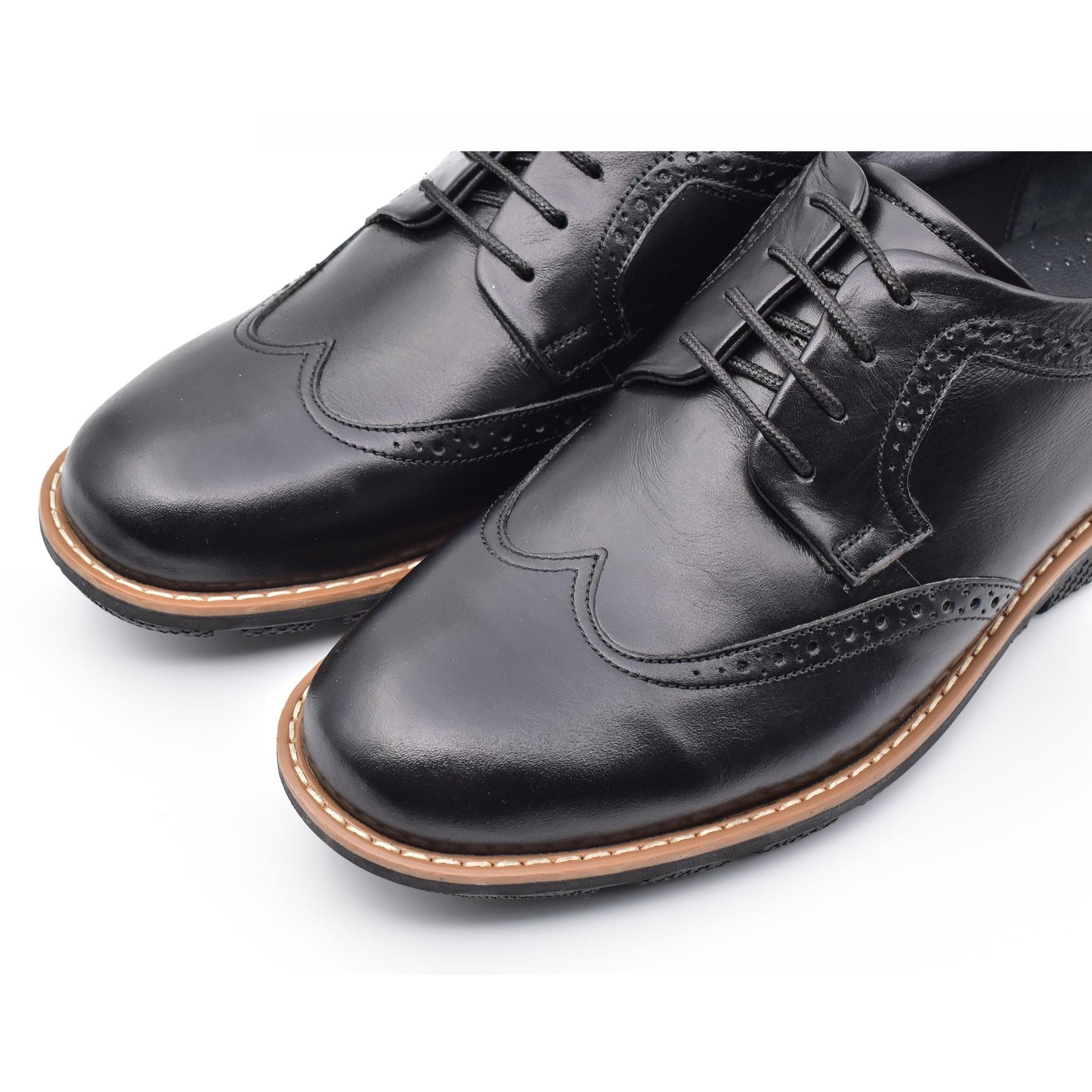 قیمت خرید کفش روزمره مردانه البرز مدل آلفرد کد 4954 اورجینال