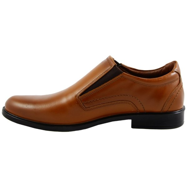 کفش مردانه رادین کد 24so