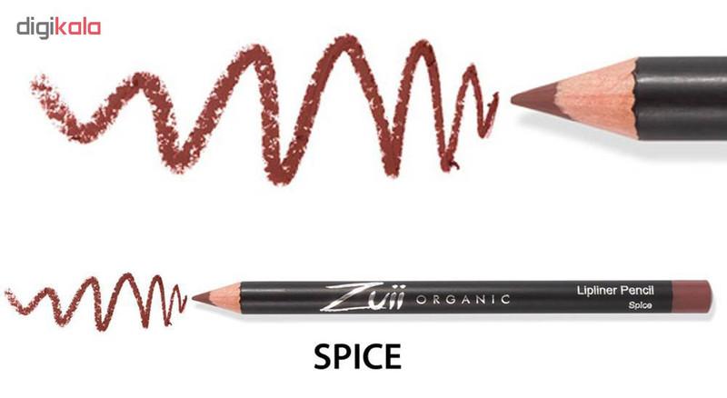 مداد لب زویی ارگانیک مدل ZL-S