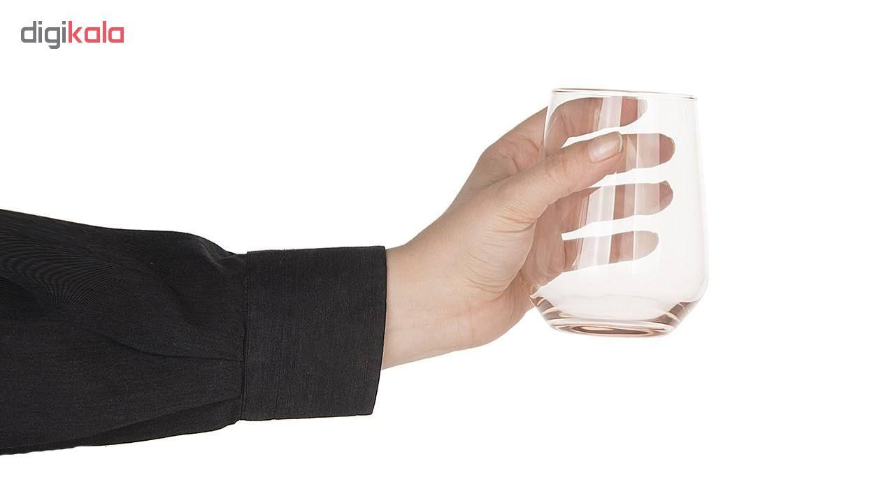 لیوان پاشاباغچه مدل Penelepi بسته 6 عددی