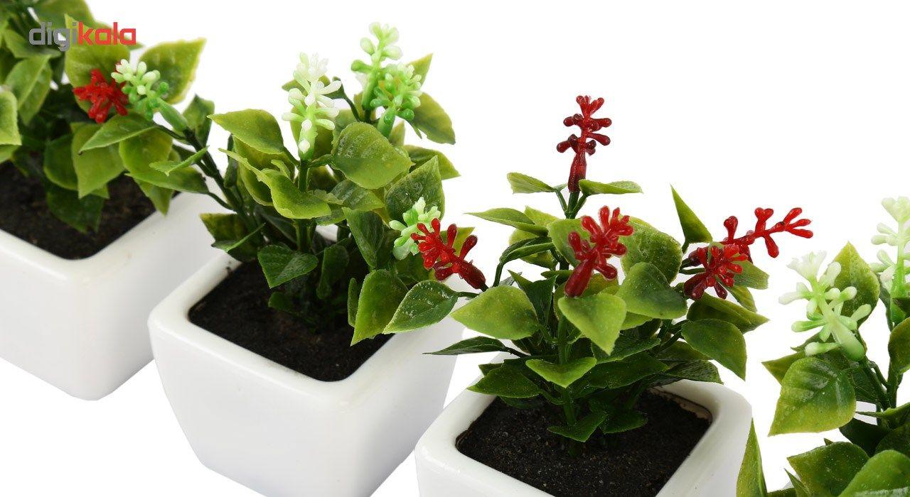 گلدان به همراه گل مصنوعی هومز طرح شمشاد مدل 30801 مجموعه 4 عددی main 1 4