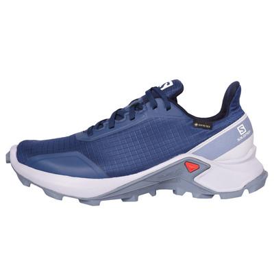 تصویر کفش مخصوص پیاده روی زنانه سالومون مدل MT 408058