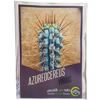 بذر آزروسرئوس وریدیس خانه سبز گلدیس کد 3672 بسته 10 عددی