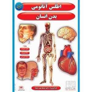 پوستر طرح  اطلس آناتومی بدن انسان مجموعه 15 عددی
