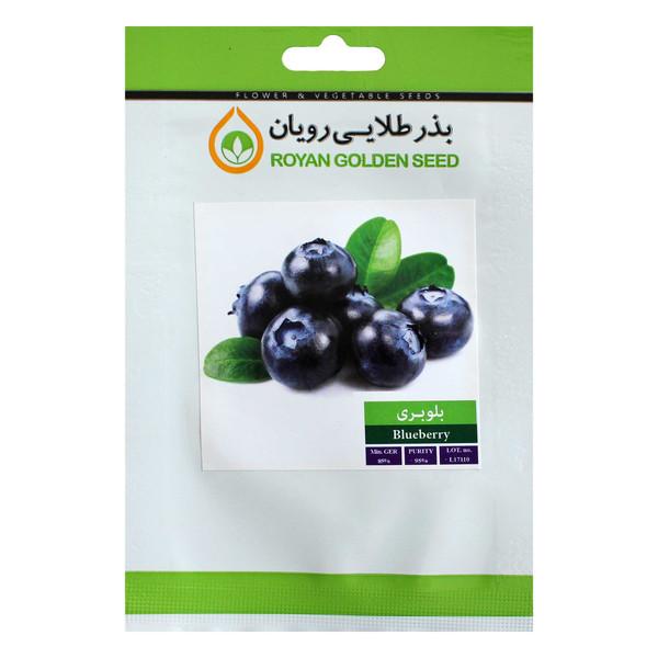 بذر میوه بلوبری بذر طلایی رویان کد BZT-131