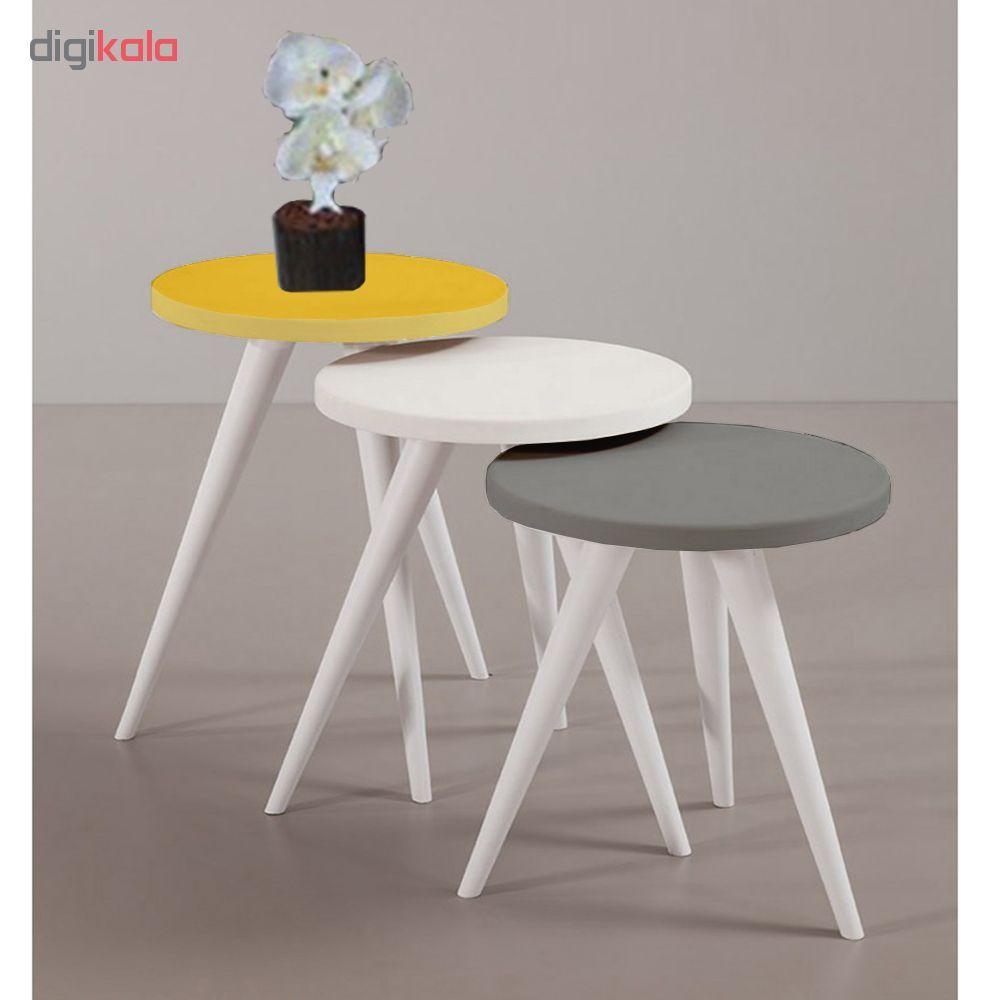میز عسلی مدل 456 کد 20 مجموعه 3 عددی main 1 1