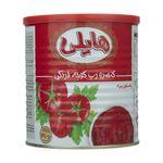 رب گوجه فرنگی هایلی - 800 گرم thumb