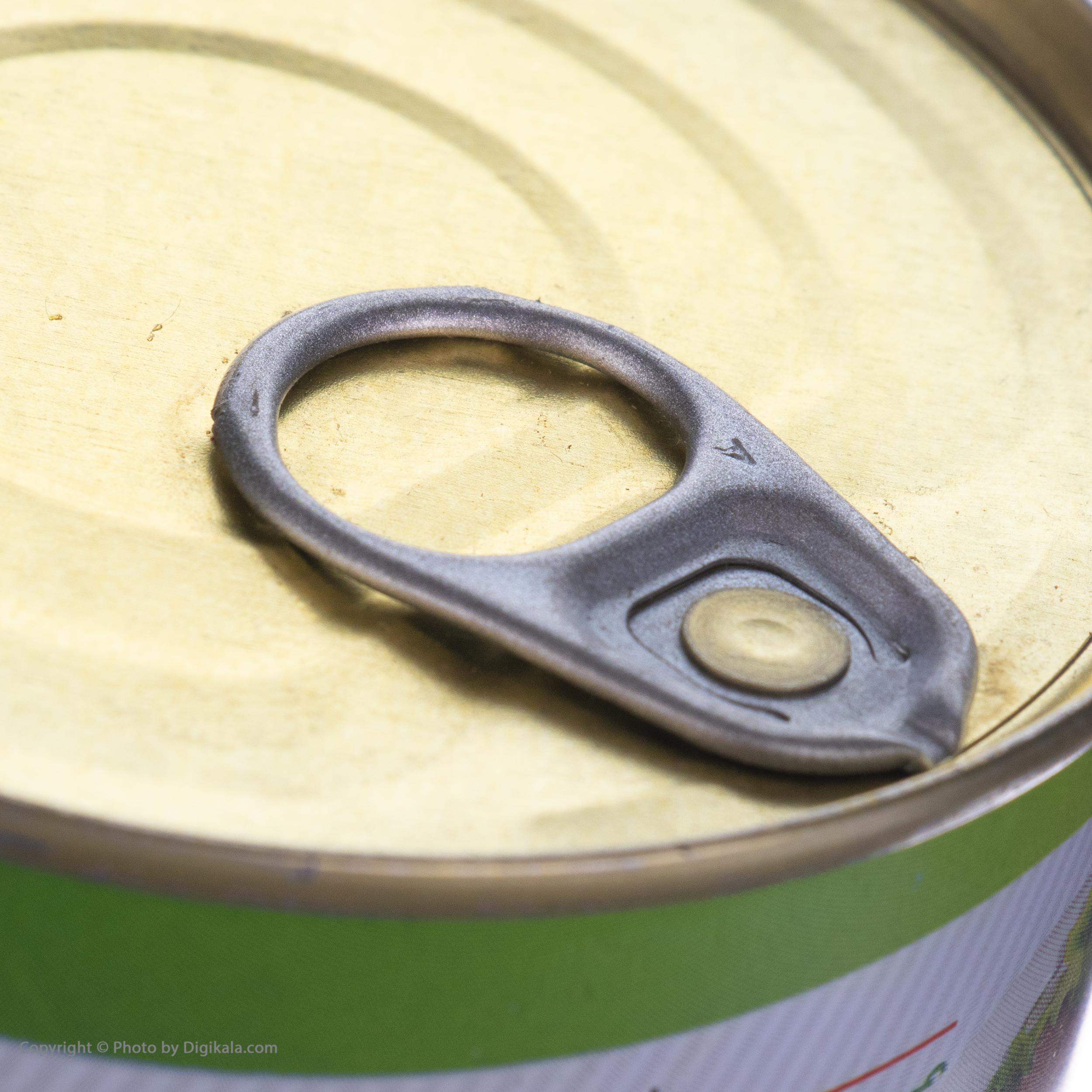 کنسرو ماهی تون در روغن گیاهی بیژن - 180 گرم main 1 3