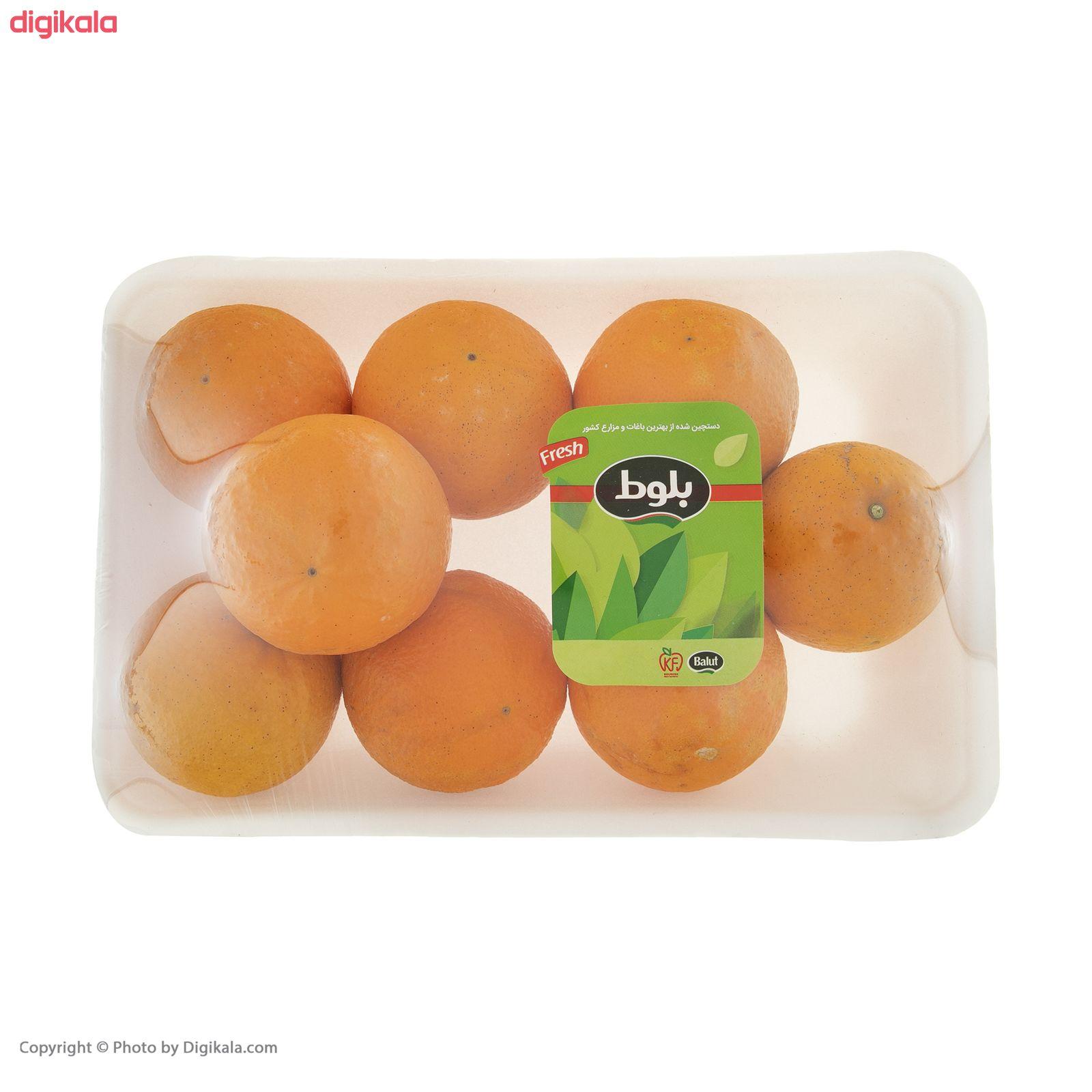 پرتقال رسمی شمال آبگیری بلوط - 1 کیلوگرم  main 1 3