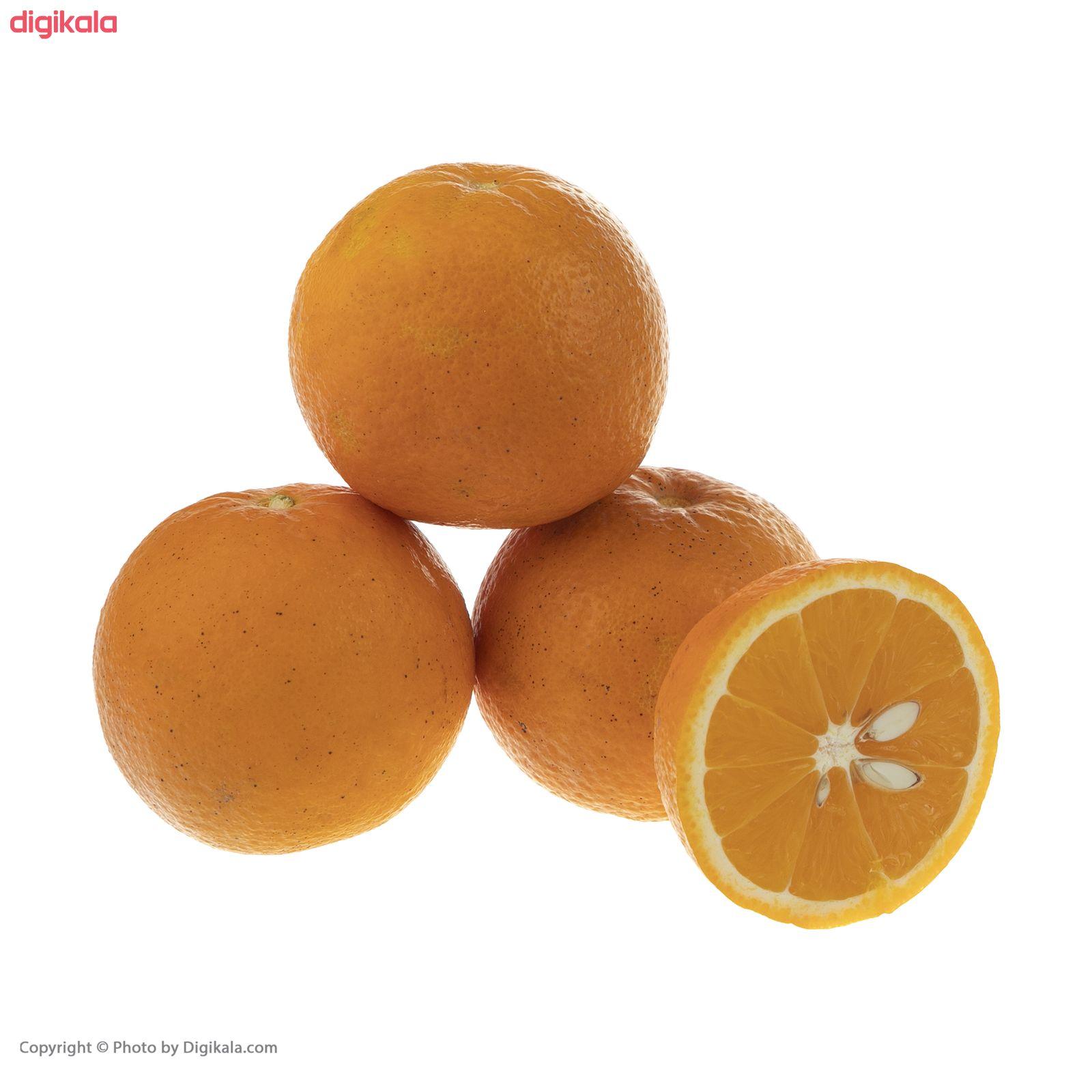 پرتقال رسمی شمال آبگیری بلوط - 1 کیلوگرم  main 1 4