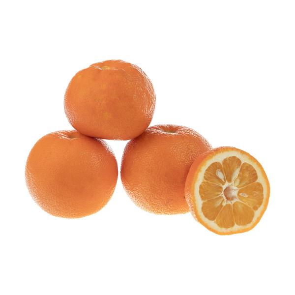 نارنج بلوط - 1 کیلوگرم