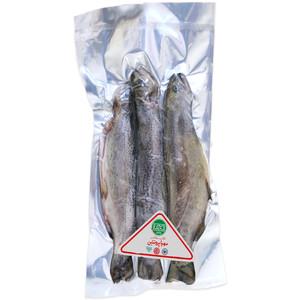 ماهی قزل آلا منجمد شکم خالی مهیا پروتئین - 1 کیلوگرم