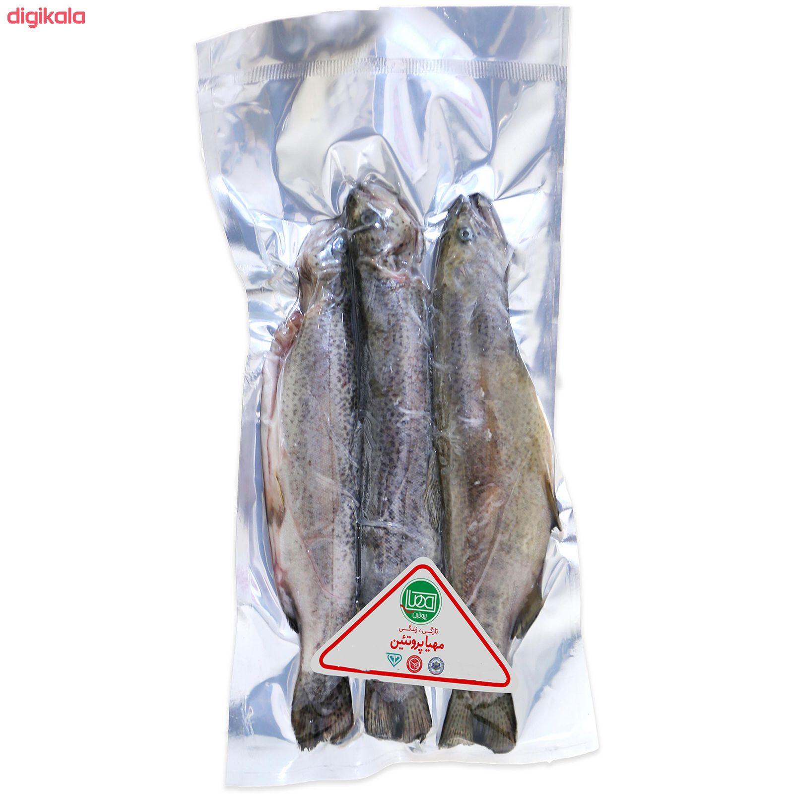 ماهی قزل آلا منجمد شکم خالی مهیا پروتئین - 1 کیلوگرم main 1 1