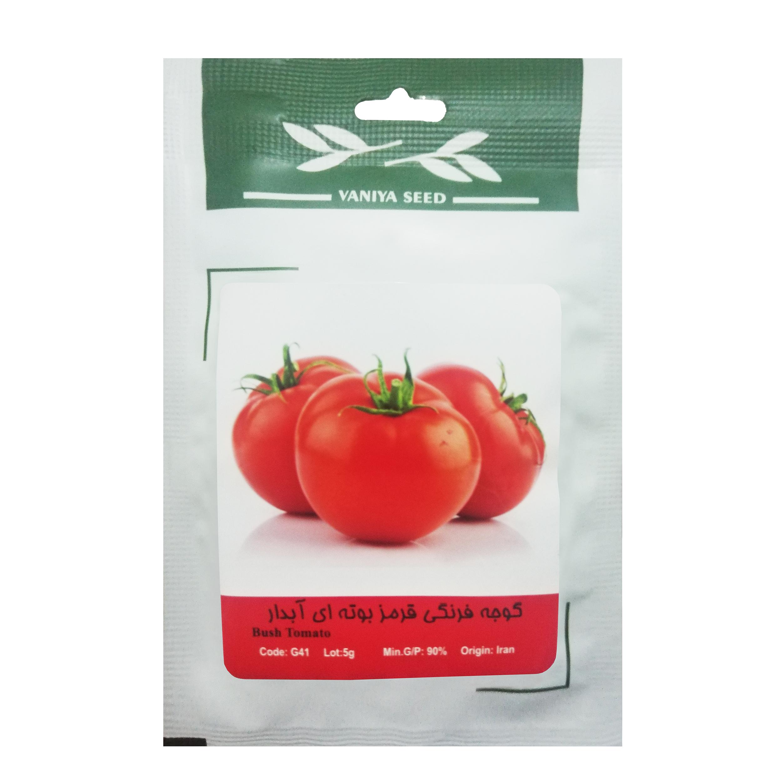 بذر گوجه فرنگی قرمز بوته ای آبدار وانیا سید مدل G41