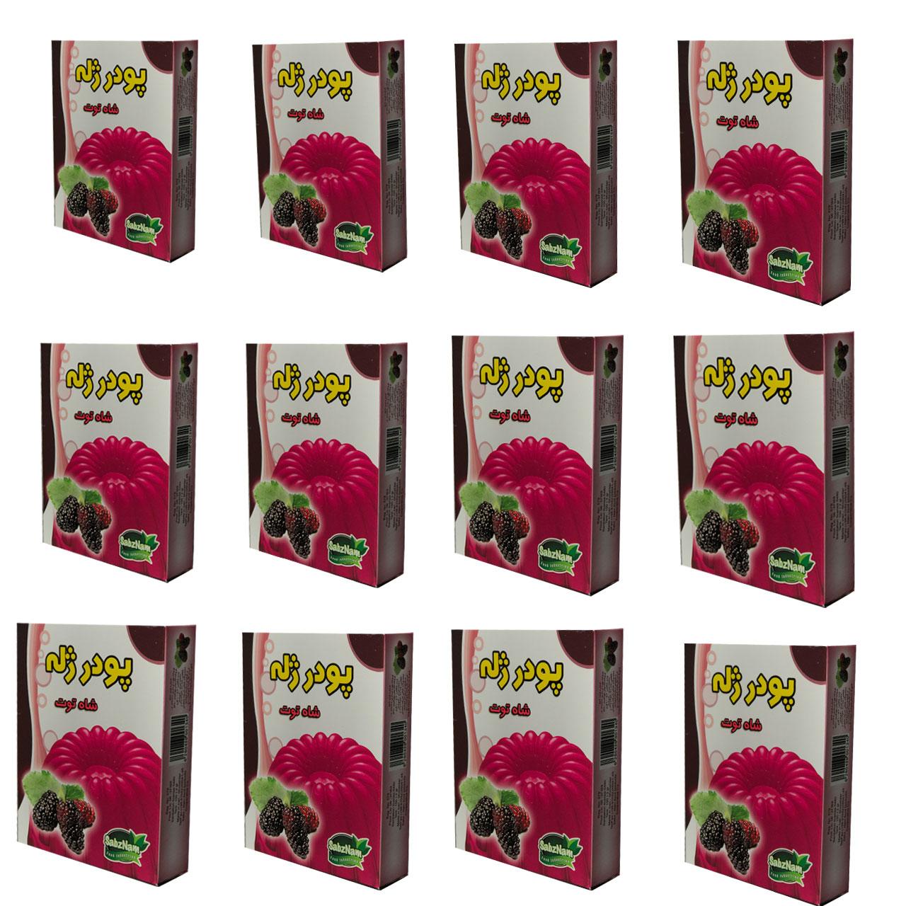 ژله شاه توت سبزنام - 100گرم مجموعه 12 عددی