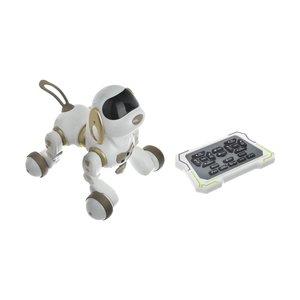 ربات سگ کنترلی دکسترتی کد 18011
