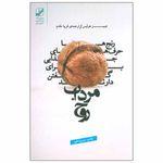 کتاب مرداب روح اثر جیمز هولیس انتشارات بنیاد فرهنگ زندگی