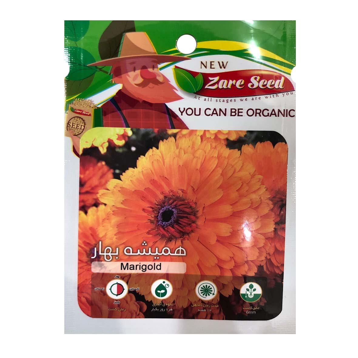 بذر گل همیشه بهار پاسارگاد کشت زارع کد zs121