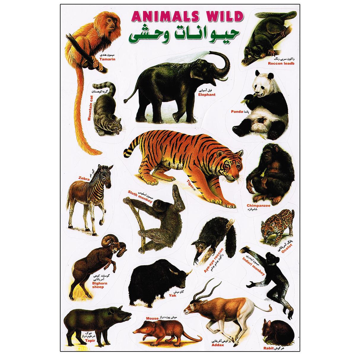 برچسب مدل حیوانات وحشی کد 1153