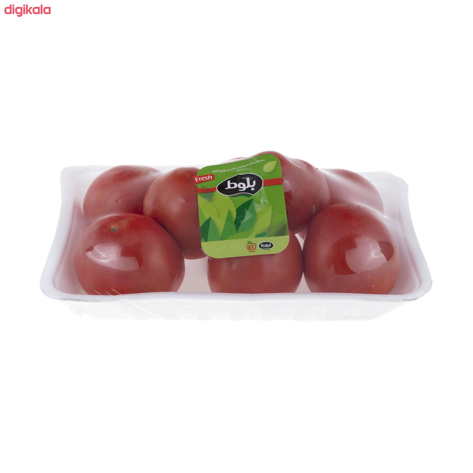 گوجه فرنگی بوته ای متین بلوط - 1 کیلوگرم  main 1 1