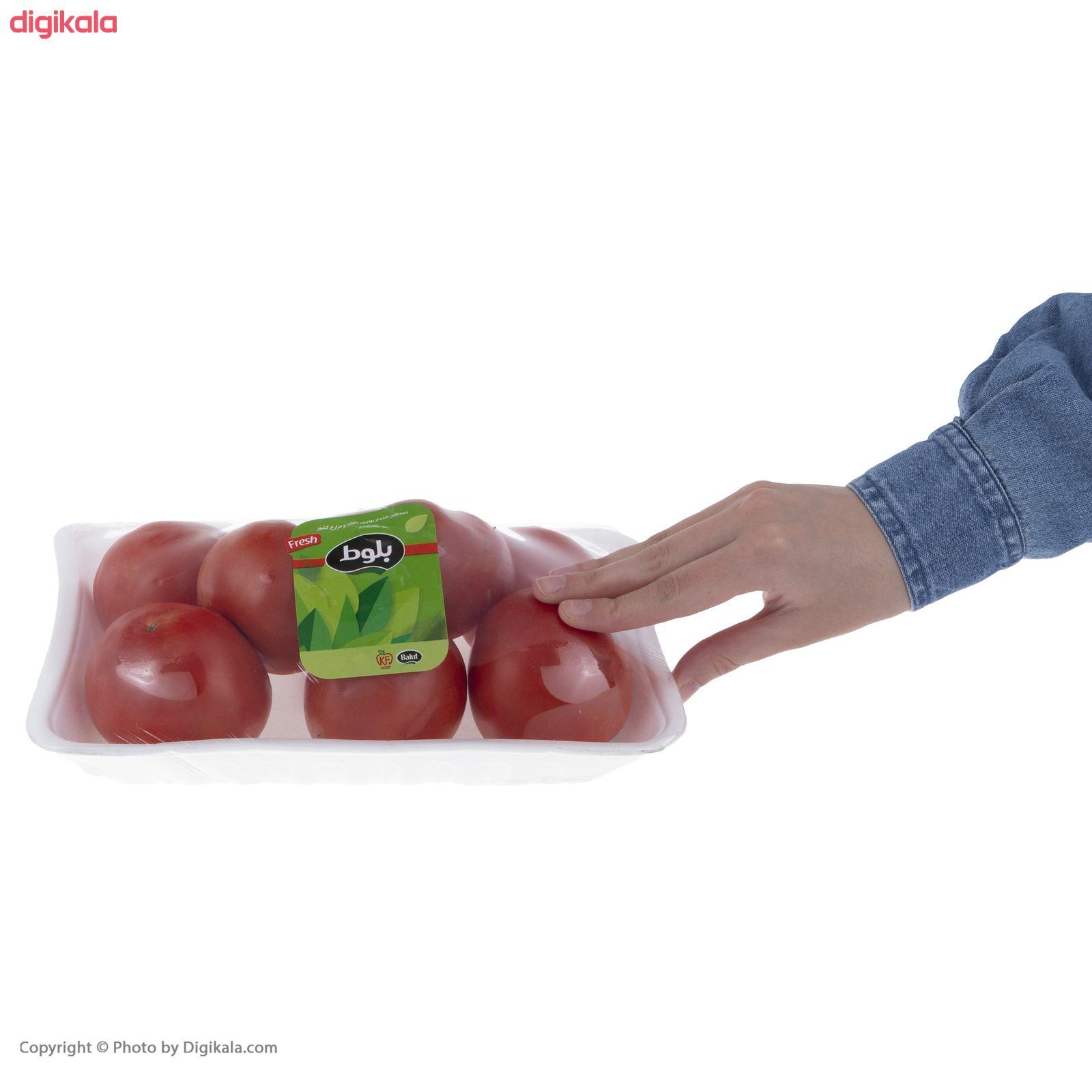 گوجه فرنگی بوته ای متین بلوط - 1 کیلوگرم  main 1 6